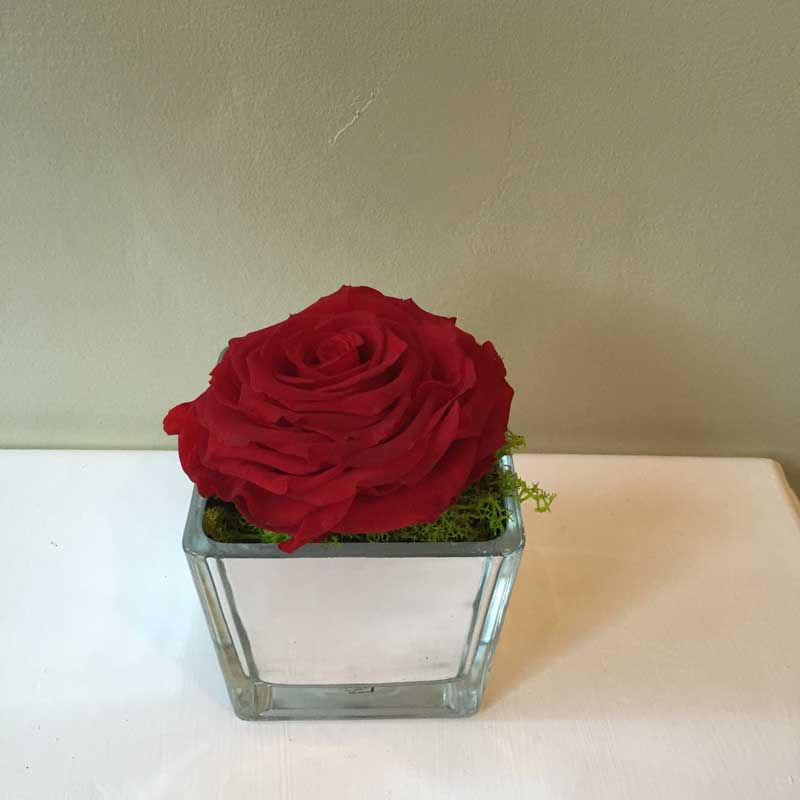 Mirror Cube Vase Terry Ann Collection Shades Of Bloom Floral Design