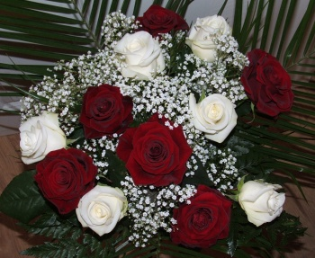 Valentine's Mixed Dozen Roses