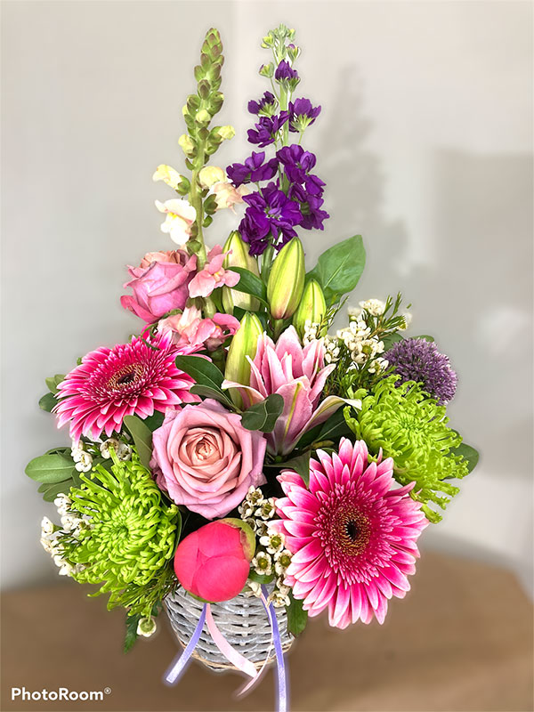 summer glo flowers